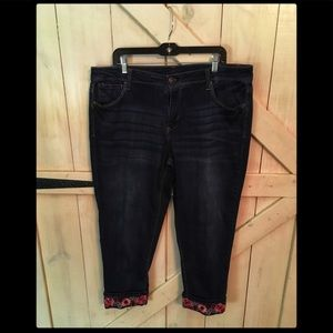 Terra and Sky Size 18w Embroidered Jean- Pink/Red!